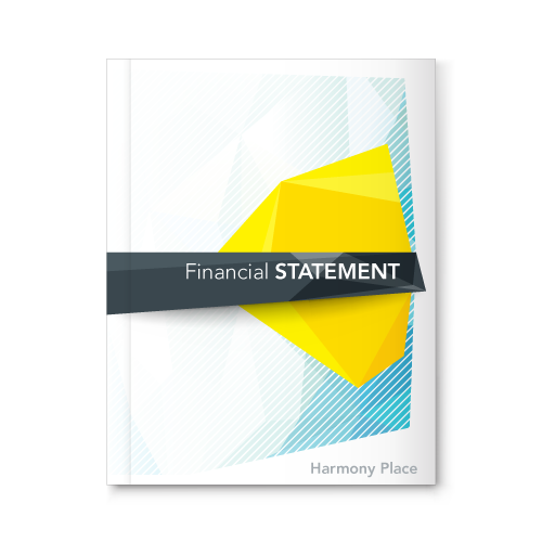 Financial Statement 2016-17